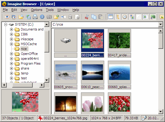 imagine_interface